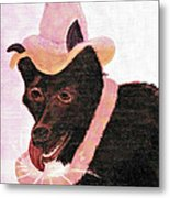 Untitled Dog With Hat Metal Print