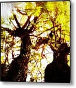 Untitled-twin Trees Metal Print