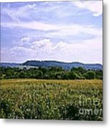 Untouched Iowa Metal Print