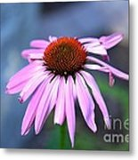 Unvarnished Metal Print