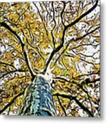 Up Into The Tree Metal Print