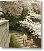 Up The Cherry Steps Metal Print
