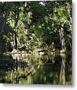 Up The Lazy River  Metal Print