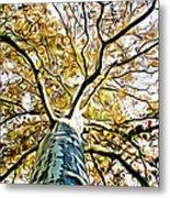 Up The Tree Metal Print
