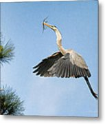 Up To The Nest Metal Print by Deborah Benoit