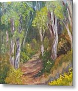 Uphill Path-batiquitos Metal Print