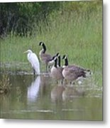 Upon The Misty Waters Metal Print