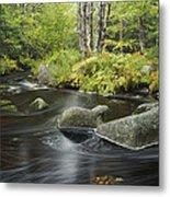 Upper Bear River In Early Autumn Nova Metal Print