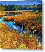 Upper Cary Lake In The Adirondacks Metal Print