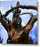 Uprooted Beauty Metal Print