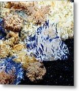 Upside Down Jelly Fish 5d24947 Metal Print