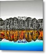 Upside Down World Metal Print