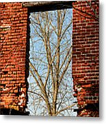 Urban Decay Metal Print by Olivier Le Queinec