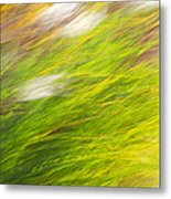 Urban Nature Fall Grass Abstract Metal Print