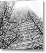 Urban V Nature  Metal Print