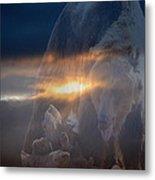 Ursa Major 2 - Great Bear Metal Print by Kevin Bone