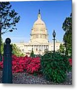 Us Capitol And Red Azaleas Metal Print