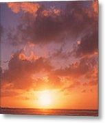 Usa, California, Pillar Point, View Metal Print