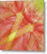 Usa, Hawaii Anthurium Flower Montage Metal Print