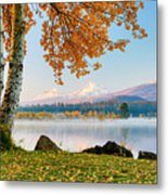 Usa, Oregon, Bend, Fall At Black Butte Metal Print