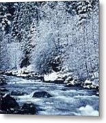 Usa, Willamette National Forest Oregon Metal Print by Greg Vaughn