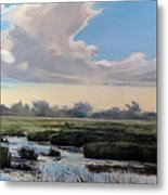 Utah County Marsh Metal Print
