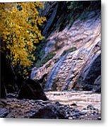 Utah - Zion National Park Virgin River 8 Metal Print