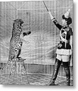 Vallecitas Leopards. Female Animal Metal Print