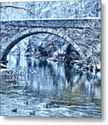 Valley Green Ducks In Winter Metal Print