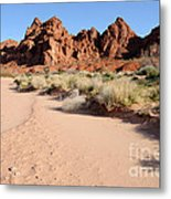 Valley Of Fire Wash Metal Print by Gary Whitton