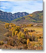 Valley Of Gold Metal Print