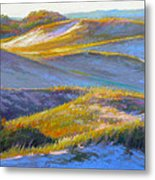 Valley Of The Dunes Metal Print by Ed Chesnovitch