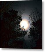 Valley Of The Moon Metal Print