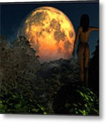 Valley Of The Moon... Metal Print