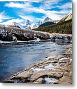 Valley Of The Moose Metal Print