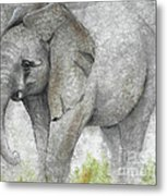 Vanishing Thunder Series-baby Elephant I Metal Print