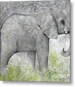 Vanishing Thunder Series-baby Elephant II  Metal Print