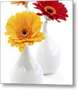 Vases With Gerbera Flowers Metal Print by Elena Elisseeva