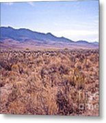 Vast Desolate And Silent - Lyon Nevada Metal Print