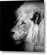 Vegas Lion - Black And White Metal Print by Ian Monk