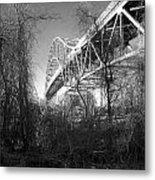 Vegetation Bridge Metal Print