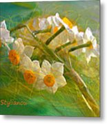 Veil On  Narcissus Metal Print