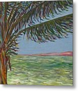 Veiled Horizon Metal Print