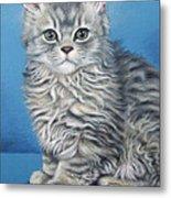 Velvet Kitten Metal Print