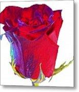 Velvet Rose Bud 2 Metal Print