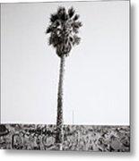 Venice Beach Metal Print