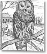 Vermont Barred Owl Metal Print