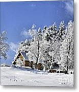 Vermont Winter Beauty Metal Print