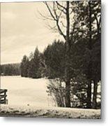 Vermont Winterland Metal Print