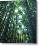 Vertical Bamboo Forest Metal Print by Aaron Bedell
